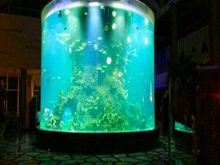 Китай по поръчка евтини супер големи кръгли pmma стъклени аквариуми чисти цилиндрични акрилни резервоари за риба