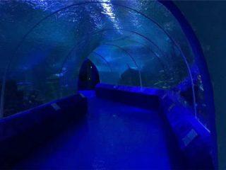 180 или 90 градусови акрилни панели за аквариум тунел