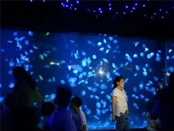 2018 акрилен аквариум резервоар стъкло