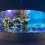 фабрика доставка риба купи, кръгли аквариуми танк танк