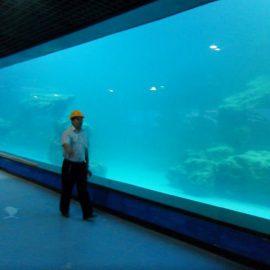 Алуминиев панел за аквариум / океанариум