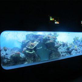 Изкуствен акрилен цилиндричен прозрачен рибен аквариум / прозорец за наблюдение