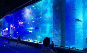 Акрилен резервоар
