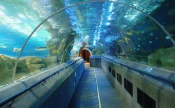 Акрилен тунел