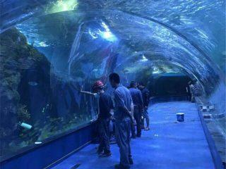 Проект за океанариум от акрилен тунел в публични аквариуми