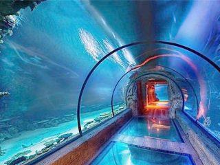 Модерен дизайн акрилен аквариум дълъг тунел